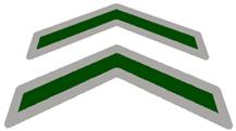 chevrons icon